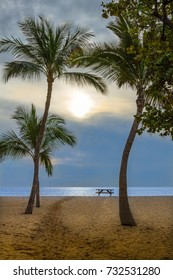 Sunset Palms Sand and Ocean Picture take of palms and ocean at Hulopoe Beach Lanai Hawaii