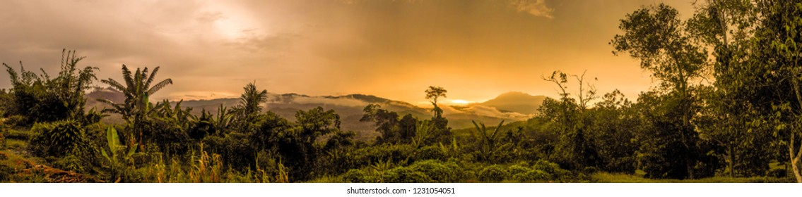 Sunset panorama after the passing of a storm in the rainforests of Borneo.