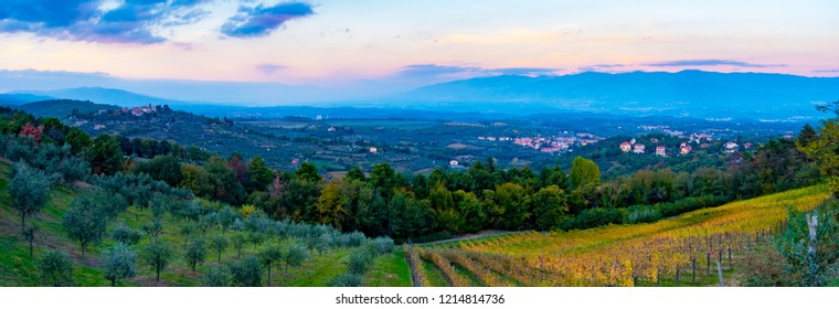 Sunset panoramic view over Cavriglia and Valdarno from a hill covered in olive trees and vineyards in autumn, Tuscany, Italy