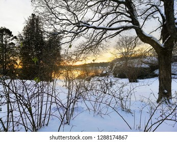 Sunset in the park during winter. Cold evening in Larvik, Norway.