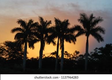 Sunset in Parkland, Florida