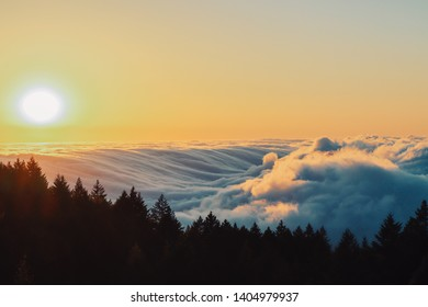 Sunset photo above the fog line on Mt. Tam in California. Stunning shot of the fog giving the appearance of ocean waves washing over the mountain side.