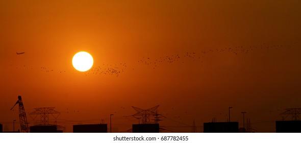 Sunset, A Photograph taken at United Arab Emirates