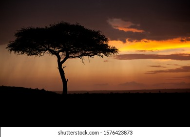 sunset photographed in east Africa