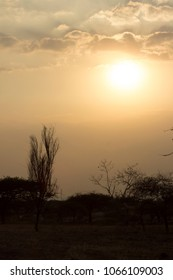 sunset pictures in grassland