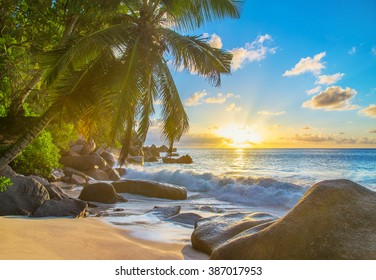 Sunset at picturesque sandy tropical palm beach with large granitic boulders, Anse Georgette, Praslin island, Seychelles, nature background
