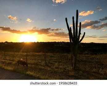 Sunset in Piranhas, AL, Brazil