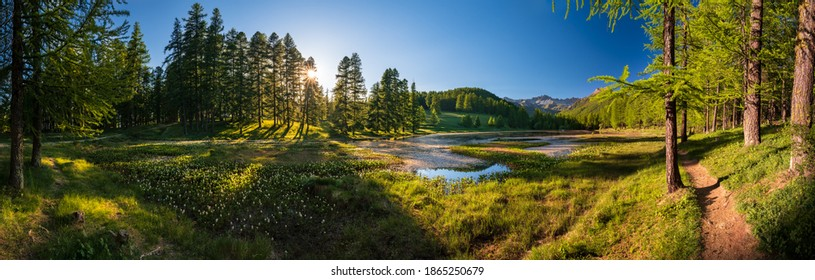 Sunset in the Queyras Nature Park with Lac de Roue lake late Spring -early Summer (panoramic). Arvieux, Hautes-Alpes, French Alps, France