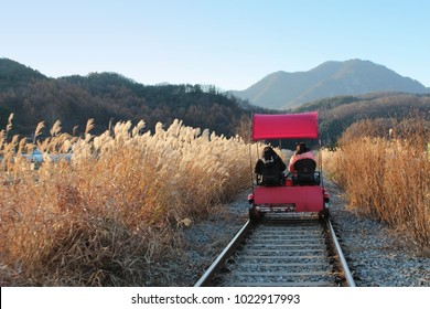 Sunset Rail bike with the pampas grass surrounding in autumn at Gapyeong Rail Park, South Korea