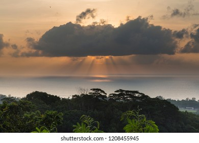 Sunset at the rainforest of the  Seychelles islands