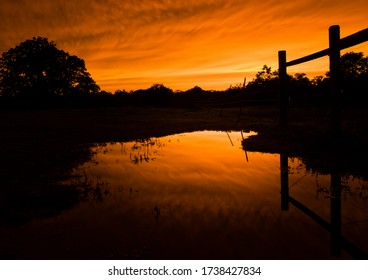 Sunset reflecting on surface of a large puddle after rain