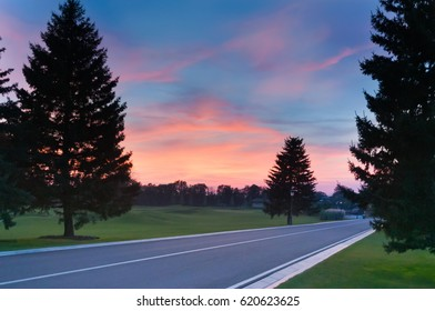 Sunset road nature silhouette trees