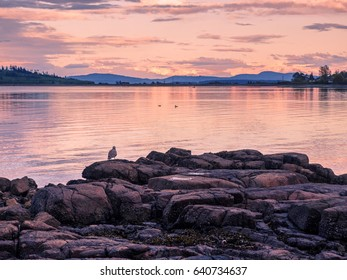 Sunset at the rocky ocean shore