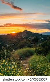 Sunset at Runyon Canyon Park, in Los Angeles, California