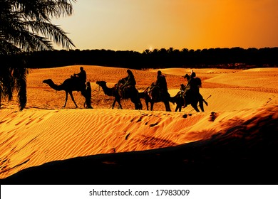 Sunset in the Sahara Desert brings the comfort of an Oasis to weary travelers for the Night,