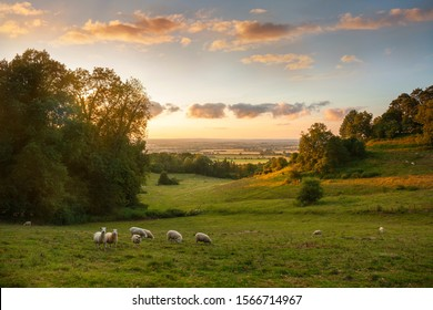 Sunset at Saintbury near Chipping Campden, Cotswolds, Gloucestershire, England