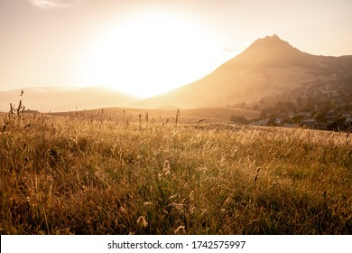 Sunset in San luis obispo in california, usa over a wheat field with view on the bishop peak mountain.