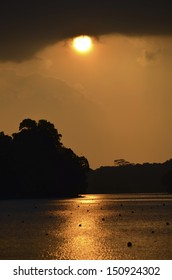 Sunset scenery at MacRitchie Reservoir, Singapore