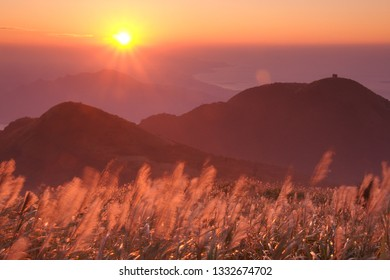 Sunset scenery of Miantianshan silhouettes from a viewpoint in Yangmingshan National Park in Taipei, Taiwan, and Miscanthus Blossoms shining through the fog in a mystical atmosphere.