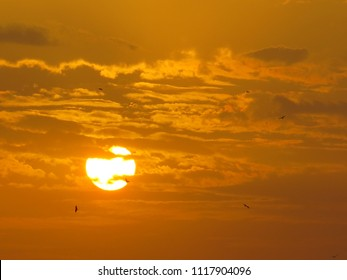 sunset scenes, clouds and sky