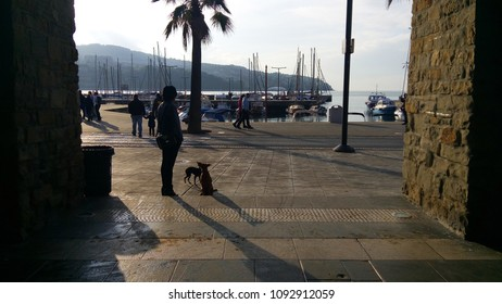 Sunset in the seaside city. Walking with dogs by the sea. Slovenija. Koper.