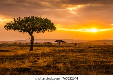 Sunset at Serengeti Park