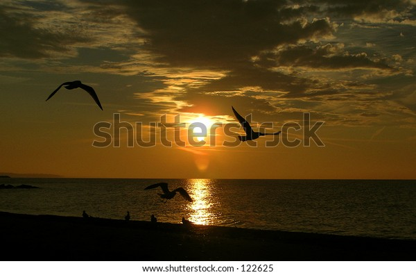 sunset and silhouettes