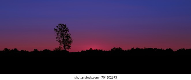 Sunset sky behind a tree line silhouette