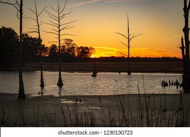 Sunset Sloughs in Kentucky