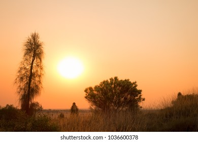 Sunset with smoke haze in the outback of the Northern Territory in Australia