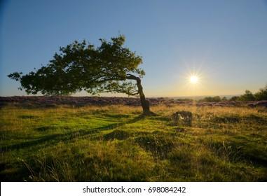 Sunset at Stanton Moor, Peak District