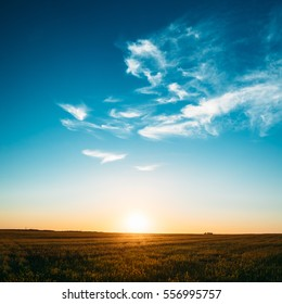 Sunset, Sunrise, Sun Over Rural Countryside Field. Bright Blue And Yellow, Orange Sky Over Meadow Ground. Copyspace