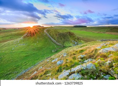 Sunset at Sycamore gap, Northumberland, England
