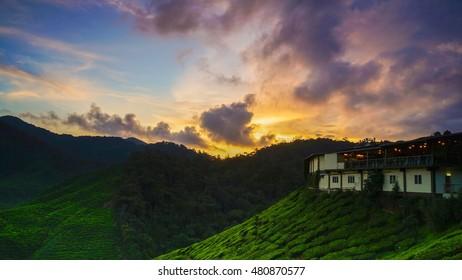 sunset with tea house at tea plantation at Cameron Highland, Malaysia.