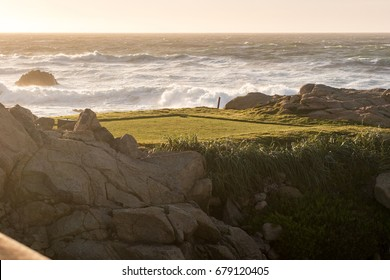 Sunset in a tee of the Pebble Beach golf club in Monterey