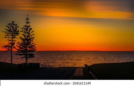 Sunset through the trees looking into Cottesloe Beach in Perth, Australia
