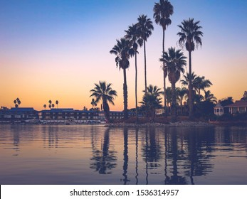 Sunset time in Lake San Marcos, North County, CA. Great reflections over the lake and the sky is in blue and orange colour with high palm tree silhouettes. Reflections are in focus only.