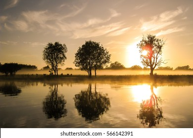 Sunset with trees reflected in the glassy Yewllow Water, Kakadu National Park, Australia