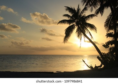 Sunset in Tropical beach