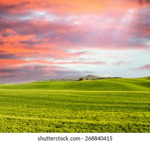 Sunset in Tuscany. Meadows in spring season.