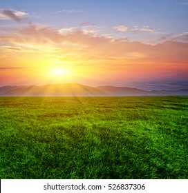 Sunset under the meadow