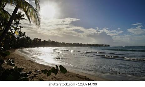 Sunset upon beach with palms, Playa Bonita Beach, Dominican Republic, Samana peninsula