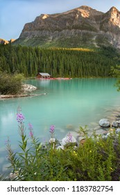 Sunset view at Lake Louise, Banff, Alberta, Canada with fireweed and marsh marigolds blooming