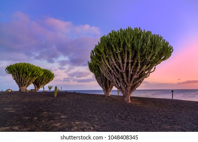 Sunset view from Lanzarote, Canary Islands, Spain