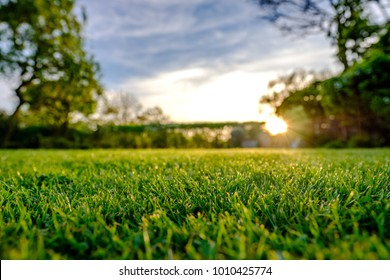 Sunset view of a large, well maintained large garden seen in early summer, showing the distant sun about to set, producing a warm light just before dusk. The grass has recently been cut.
