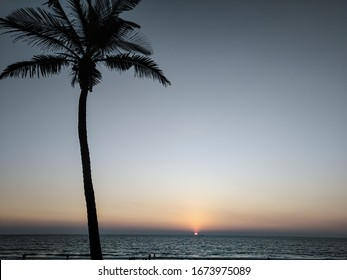 a sunset view on a goan beach with a tree