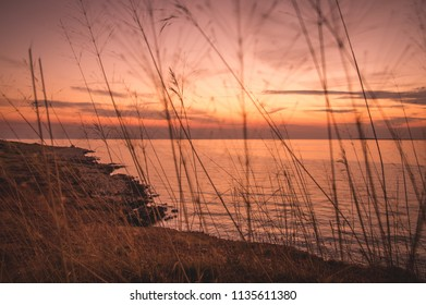 Sunset view on Vir island with grass in foreground