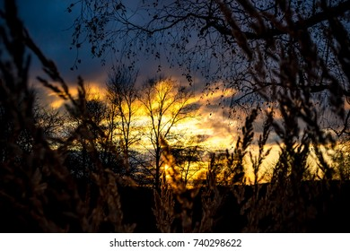 Sunset, view through the grass in the field