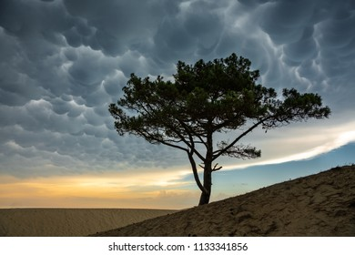 Sunset walk and dramatic sky over the Dune de Pilat in France on the Atlantic Ocean