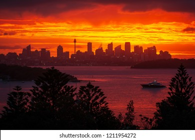 Sunset at Watsons Bay, Sydney, Australia. Epic sunset overlooking Sydney Harbour and Sydney cityscape.